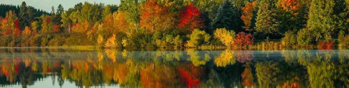 Herbst; ©tmild/fotolia