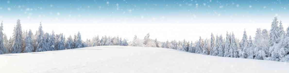Winter; Foto: ©Jag_cz/fotolia