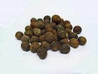 Cocculus Früchte; Foto: © Dr. Zell